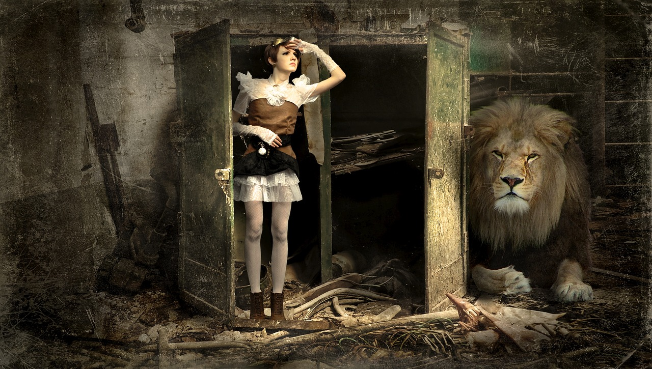 Skříň a lev